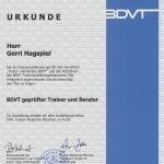 Urkunde BDVT Gerri Hagspiel
